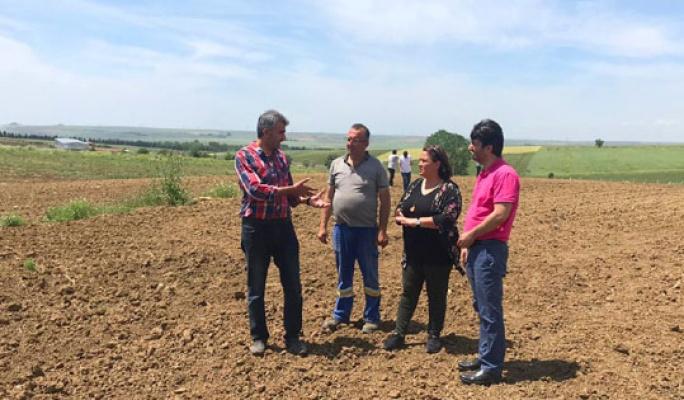 TÜRAM'da yerli tohum ekimleri başladı