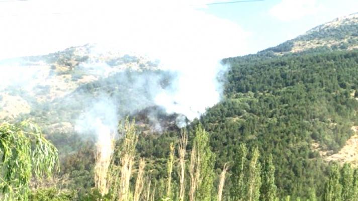HDP'li vekilden yangınlara tepki