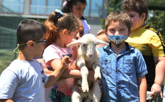 Özel çocuklar hayvan dostlarıyla