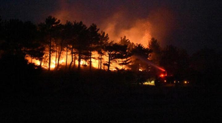 Son on yılda her gün 7 orman yangını çıkmış