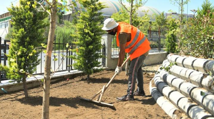 Esenyurt parklarında ağaçlandırma