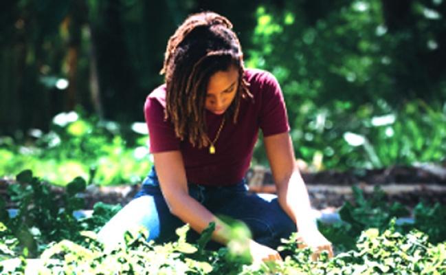 Toprağın Kadınları Ödülü başvuruları başladı