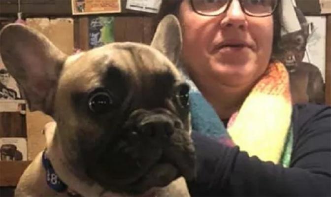 Köpek belediye başkanı seçildi