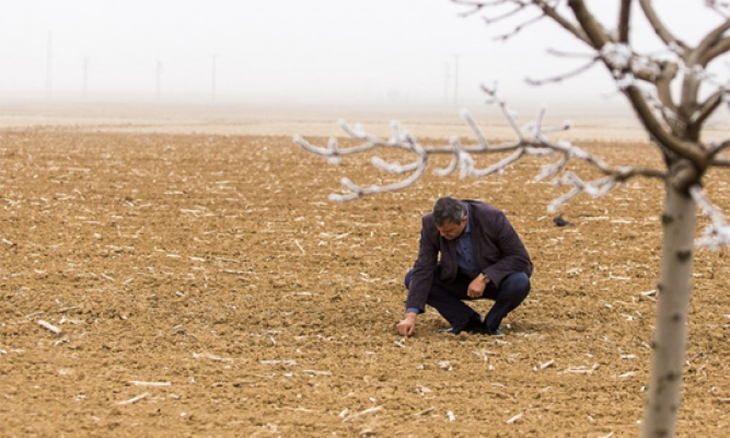 Kuraklık çiftçiyi kaygılandırıyor