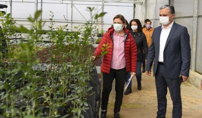 Muratpaşa 'da fidanlığı toplumla bütünleşiyor
