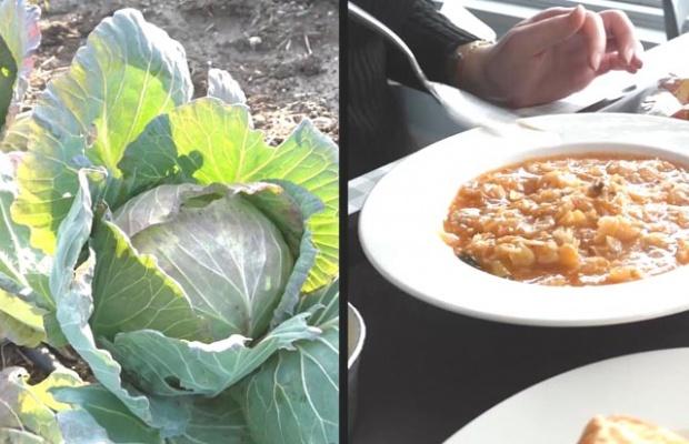 Silivri Köy Pazarı'ndan belediye mutfağına