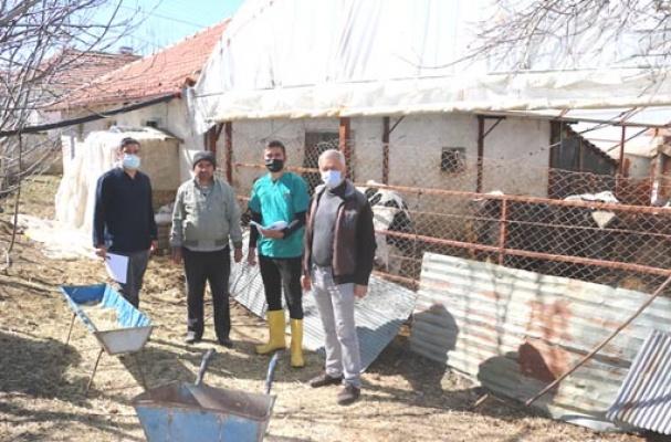 Antalyalı besicilere belediye desteği