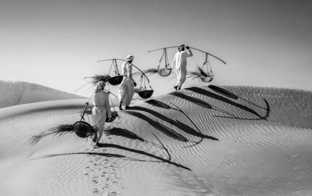 Uluslararası Güler Ertan Fotoğraf Yarışması Sonuçlandı