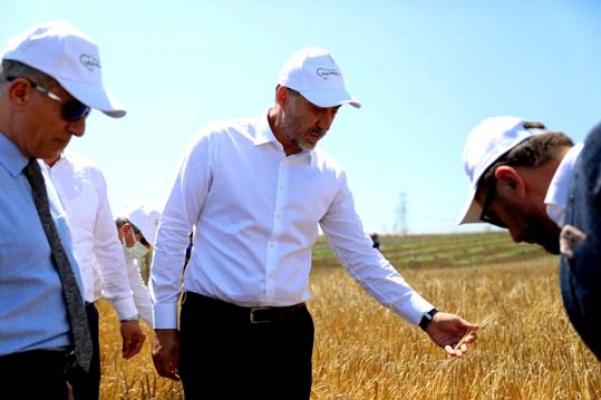 Silivri'de üretime 7 milyon TL