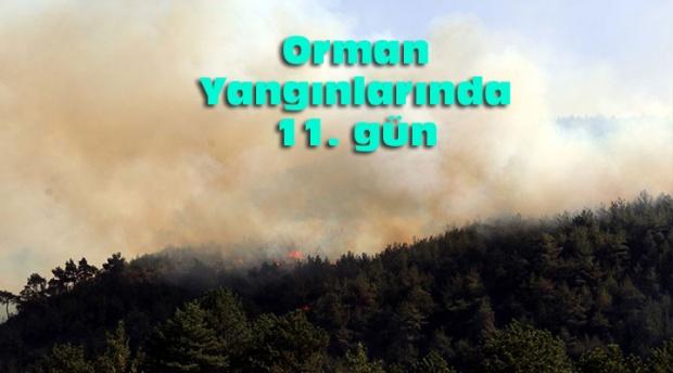 5 orman yangını devam ediyor