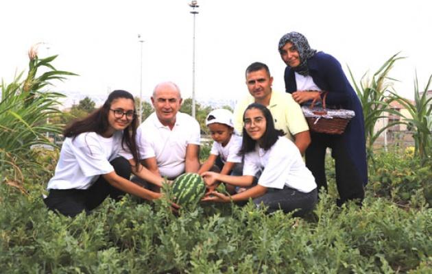 Büyükçekmece'de kent tarımı mahallelere yayılıyor