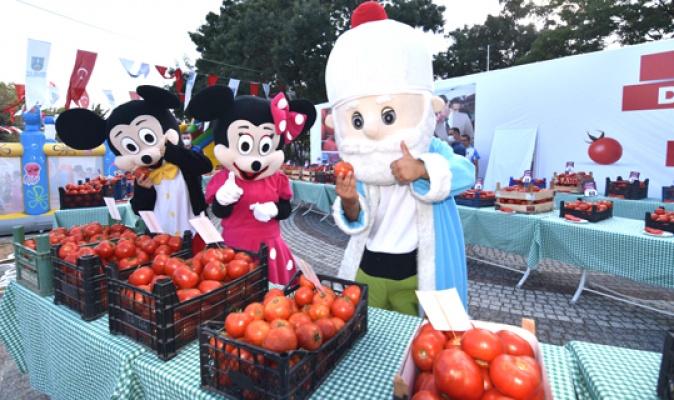 Silivri Değirmenköy'de domatesler yarıştı