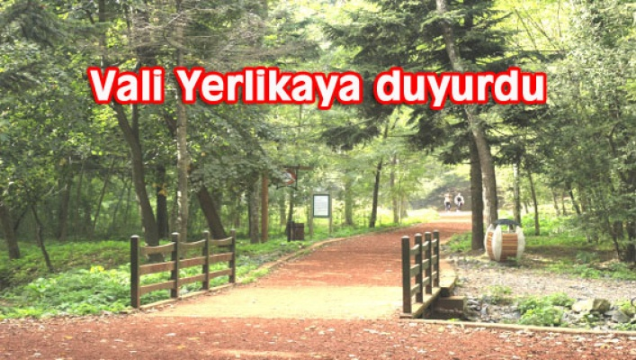 İSTANBUL'DA ORMAN YASAĞI 1 AY UZATILDI