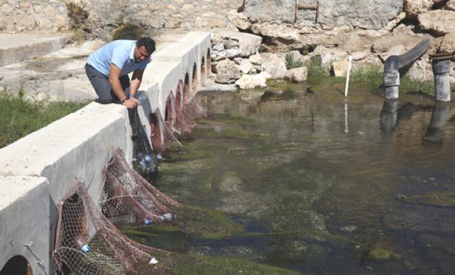 Kapanlar denizi çöpten korudu