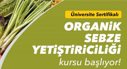 Silivri'de organik sebze yetiştiriciliği kursu başlıyor