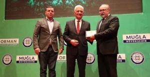Türkiye'nin ilk Orman Yangını Çalıştayı Muğla'da