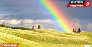 Yeni düzende gökkuşağının renkleri...