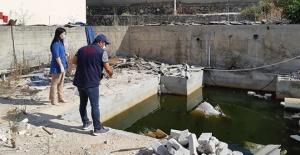 Maltepe'de vektörle mücadele devam ediyor