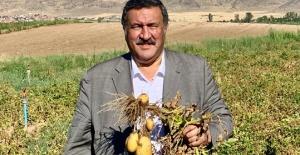 Çiftçilerin perişanlığı had safhada