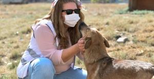 Esenyurt Belediyesi hayvanları unutmuyor