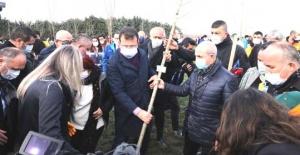 Akgün, 8 Mart Hatıra Ormanı'na ağaç dikti