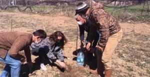Antalya Büyükşehir'in lavanta desteği sürüyor