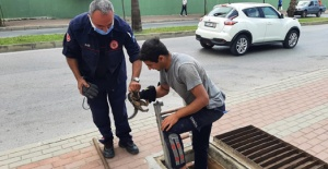 Manavgat'ta kedi kurtarma operasyonu