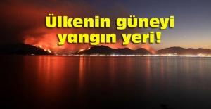 Antalya, Adana, Mersin,Muğla, Osmaniye ve Kayseri 'de orman yangınları